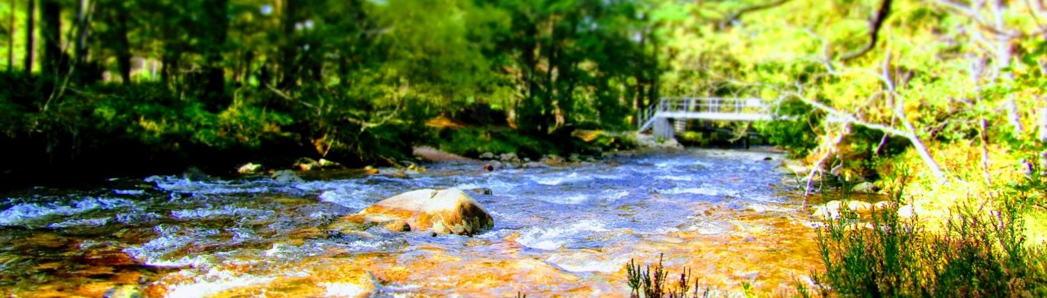 River view in Cairngorms